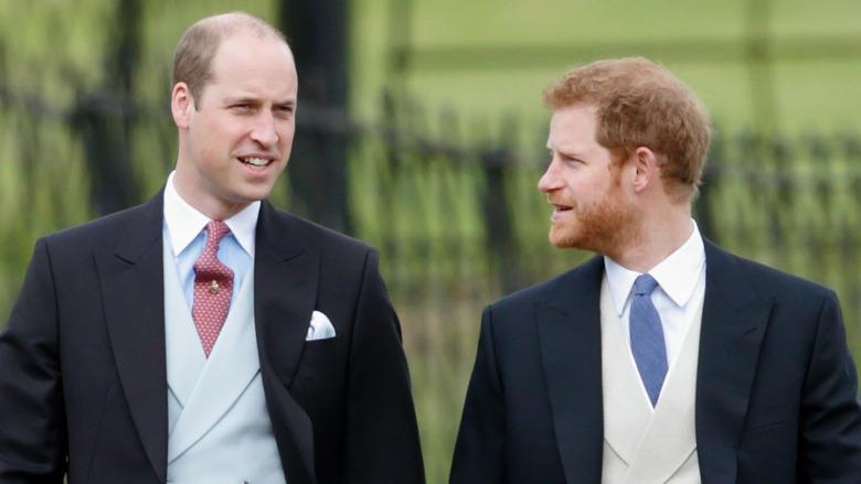 ウィリアム王子とハリー王子が話している