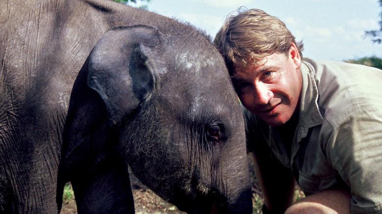 象とスティーブアーウィン